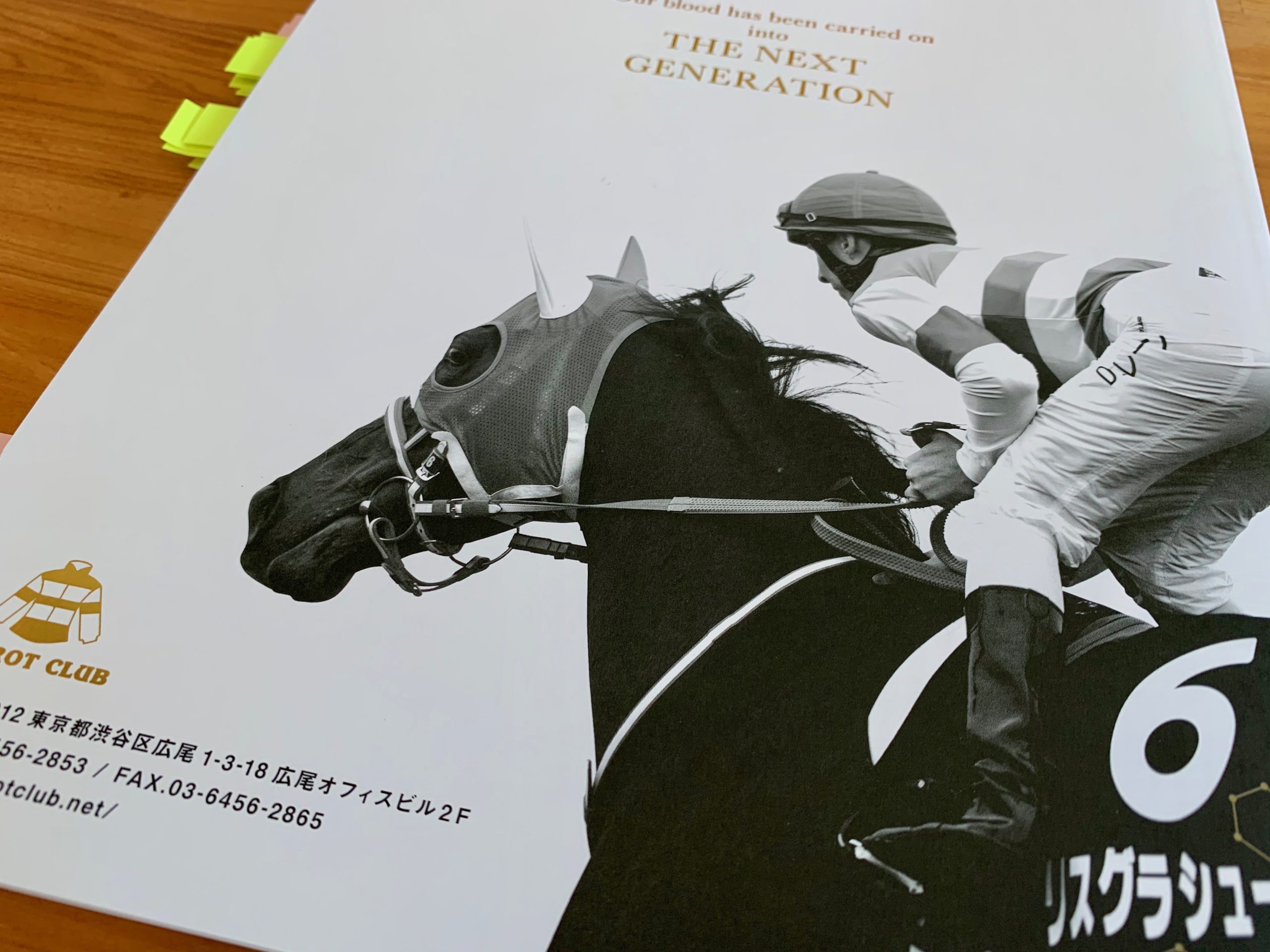 評価 キャロット 馬 クラブ 募集 2020